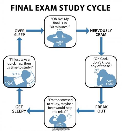 Final exam study cycle for geeks
