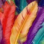 Stunning HD Wallpapers For Your Desktop_57_014