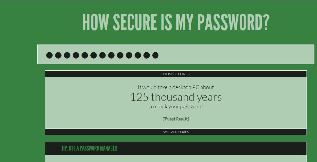 how secure is my password tool