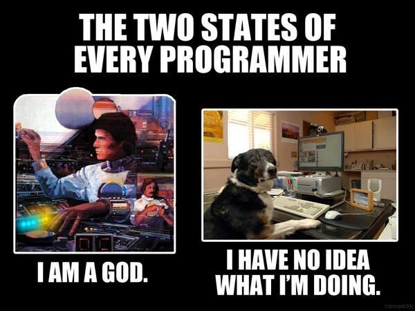 how programmers feel : lol