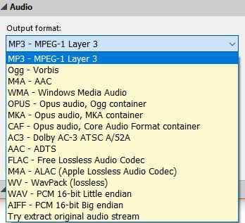 choosing the output audio format in Pazera Free Audio Extractor