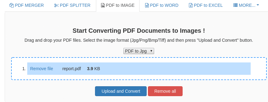 selecting pdf file to upload for converting to images