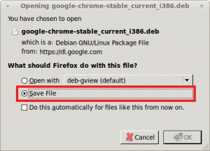 Google Chrome - Downloading and saving the package file