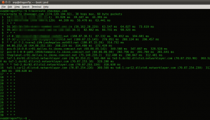 Traceroute in Linux Mint / Ubuntu Terminal