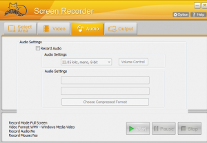 SnowFox Screen Recorder audio settings