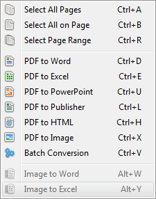 Conversion options in PDF Converter Elite